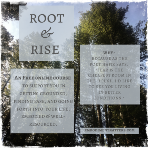 rooted & rising together